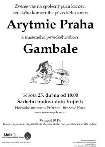 Koncert_Arytmie_Pribram